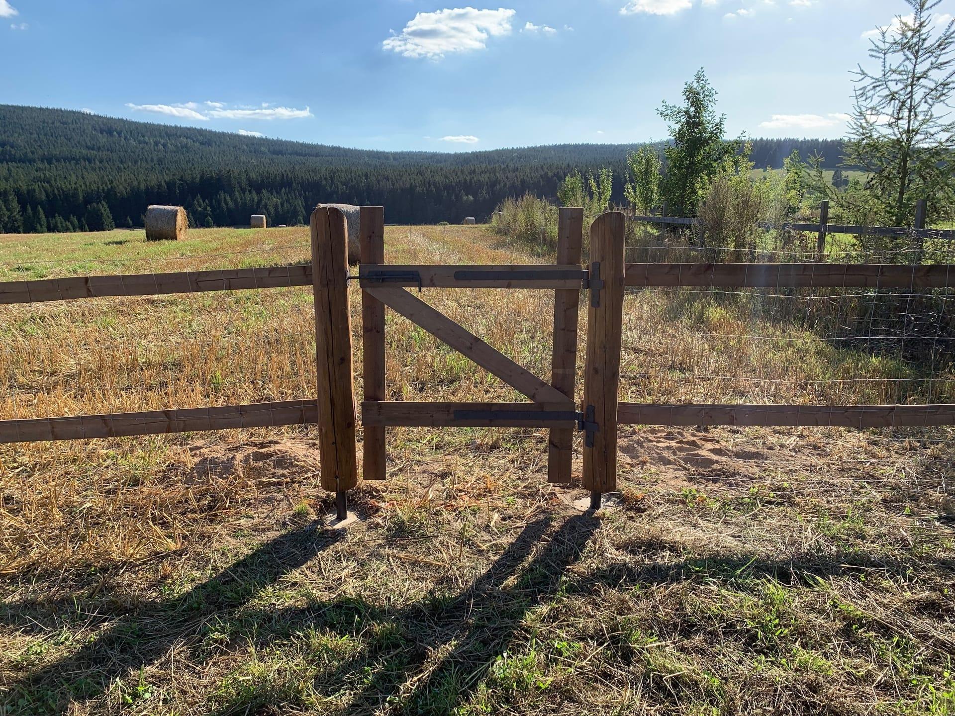 Obrázek 1 / Dřevěné ploty - strojně loupané   - realizace Křižánky 9-2019