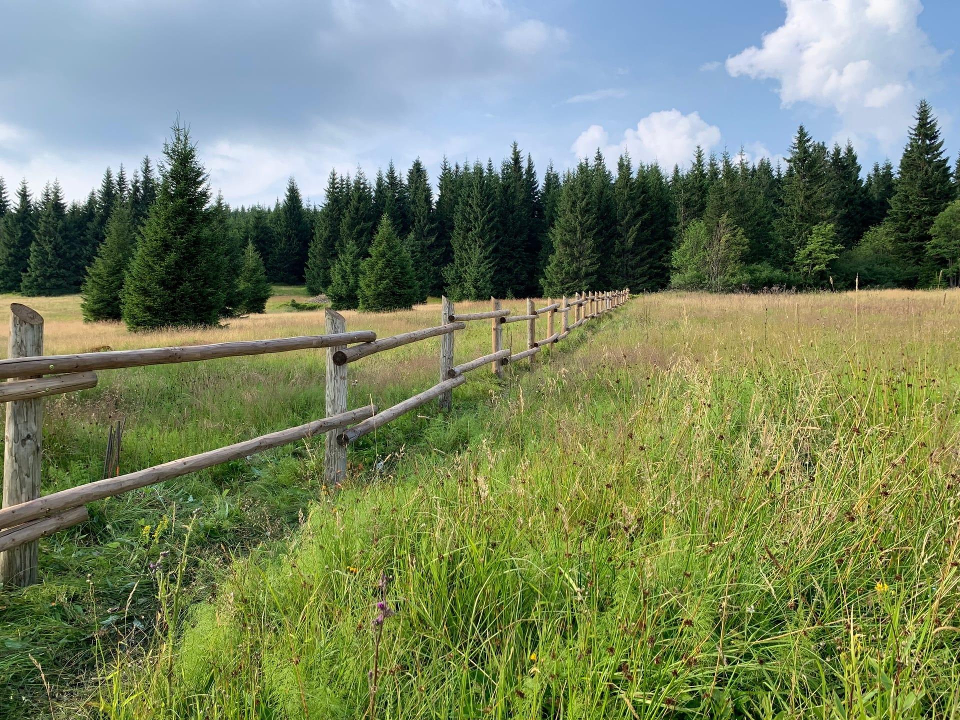 Obrázek 1 / Dřevěné ploty - ručně opracovaný   - realizace Horní Malá Úpa 7-2019